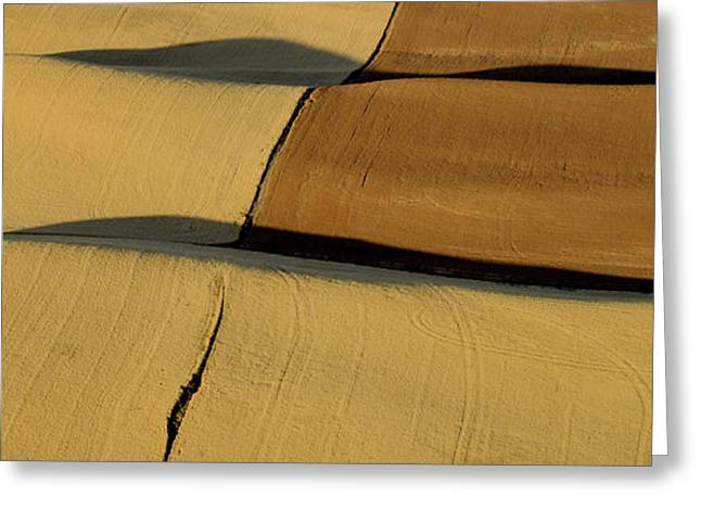 Usa Photographs Greeting Cards - Lines and Light of the Palouse Greeting Card by Latah Trail Foundation