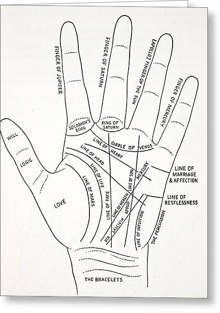 Fortune-telling Greeting Cards - Lines Of The Hand Greeting Card by English School