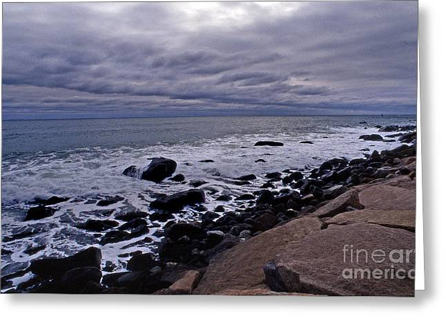 Sea View Greeting Cards - Lines Of Thought Greeting Card by Skip Willits