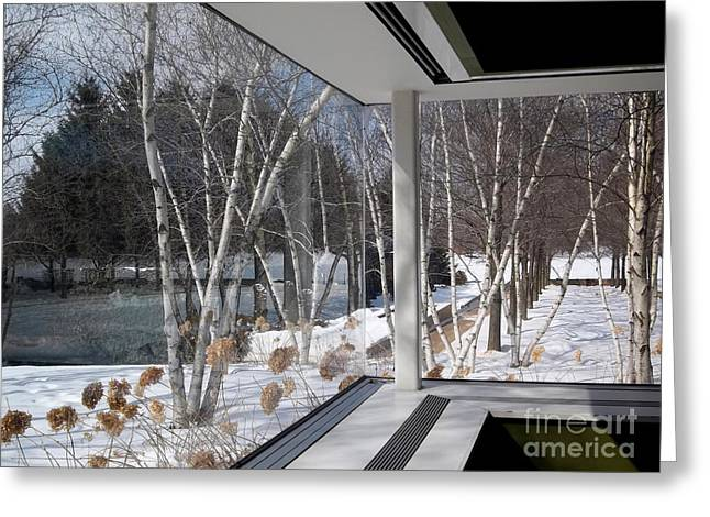 Chicago Botanic Garden Greeting Cards - Linnaeus Room Winter View Greeting Card by Nancy Mueller