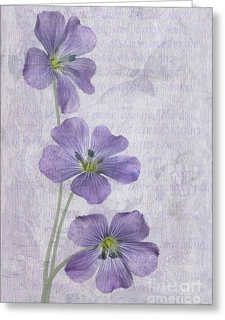 Trio Greeting Cards - Linum Greeting Card by John Edwards