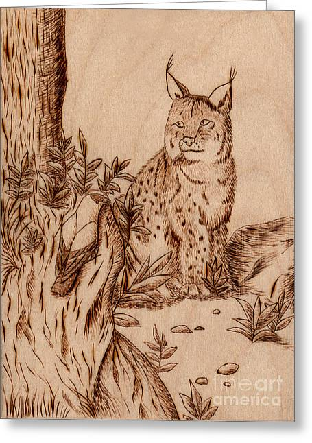 Pebbles Pyrography Greeting Cards - Linx Greeting Card by Jeanette K