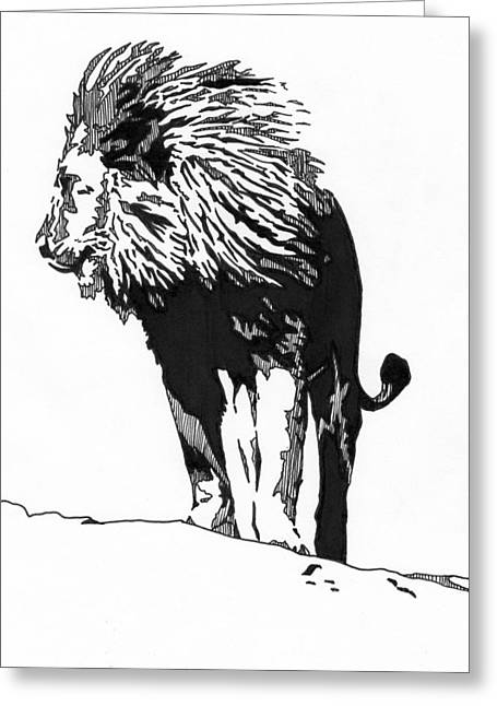 Recently Sold -  - Ink Drawing Greeting Cards - Lion 5x7 Card Greeting Card by Matthew Howard