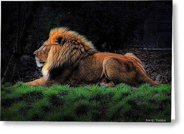 Lions Greeting Cards - Lion At Rest Greeting Card by Jon Volden