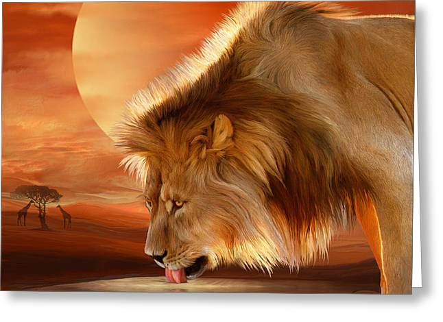 Lion At Sunset Greeting Card by Carol Cavalaris