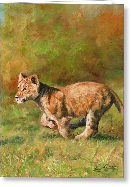 Lions Greeting Cards - Lion Cub Running Greeting Card by David Stribbling