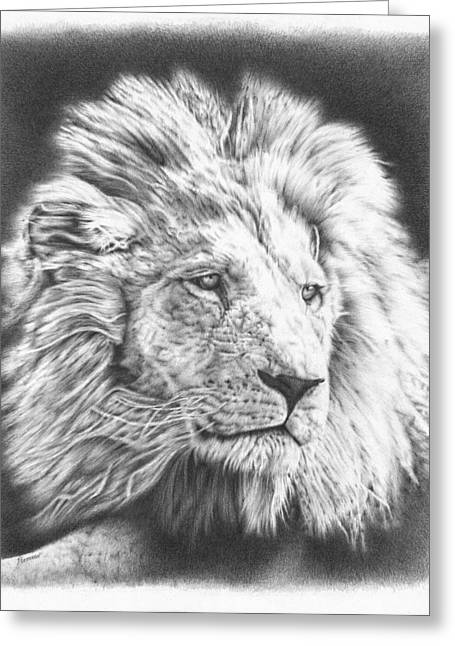Wild Life Drawings Greeting Cards - Lion drawing 2 Greeting Card by Heidi Vormer