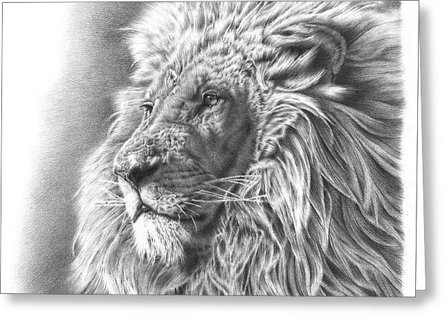 Black And White Drawings Greeting Cards - Lion Drawing Greeting Card by Heidi Vormer