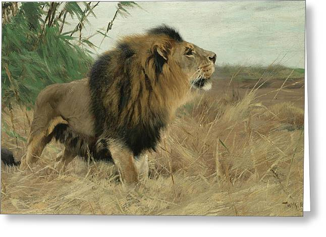 Lioness Greeting Cards - Lion Greeting Card by Friedrich Wilhelm Kuhnert