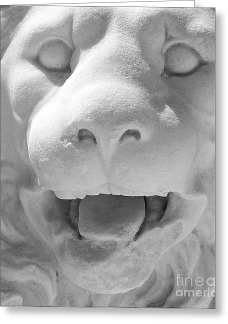 Macro Sculptures Greeting Cards - Lion  Greeting Card by Georgios Kollidas