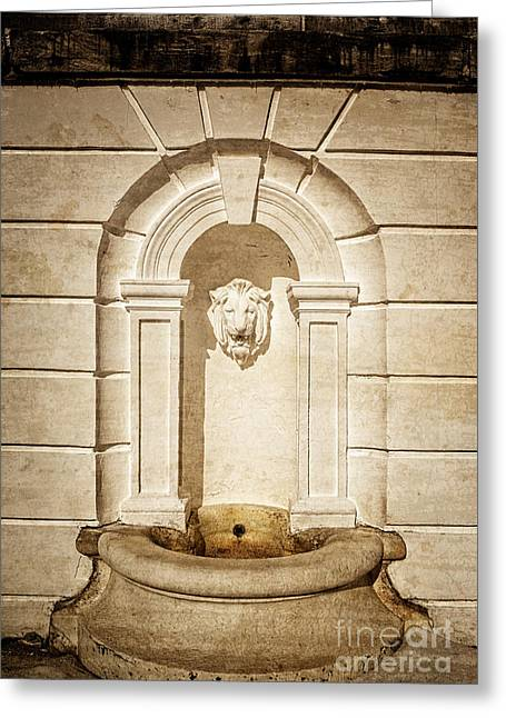 The Houses Photographs Greeting Cards - Lion Head Fountain The Mount Edith Warton Estate Lenox Ma Greeting Card by Edward Fielding