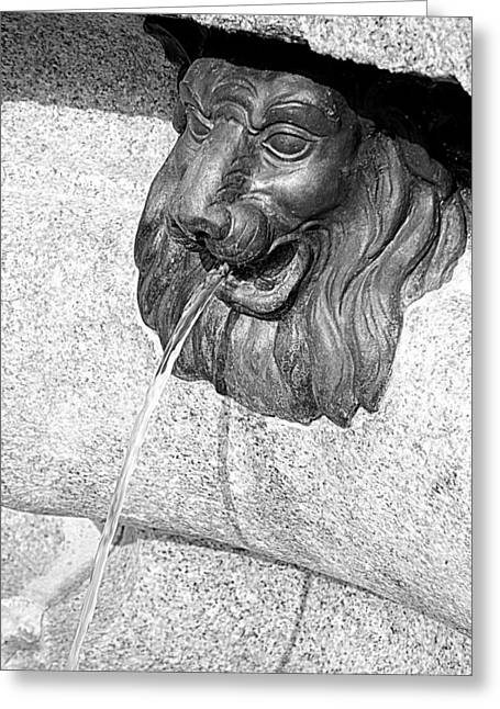 Cool Lion Greeting Cards - Lion Head Greeting Card by Valentino Visentini