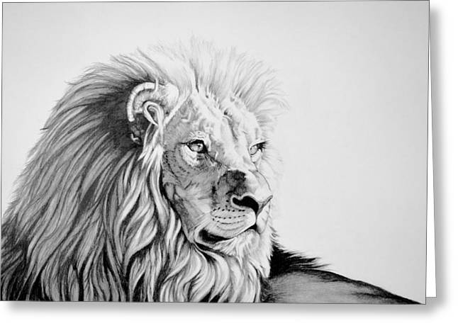 Wild Life Drawings Greeting Cards - Lion Greeting Card by Kathleen Fiorito