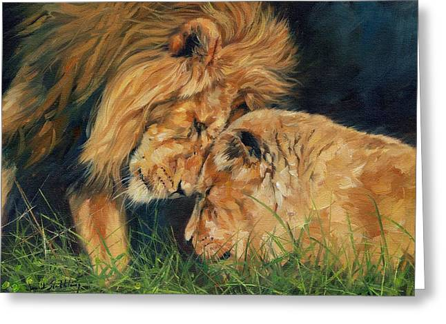 Lioness Greeting Cards - Lion  Love Greeting Card by David Stribbling