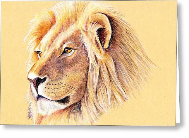 Mary Mayes Greeting Cards - Lion Greeting Card by Mary Mayes