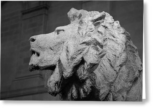 Lions Photographs Greeting Cards - Lion of the Art Institute Chicago B W Greeting Card by Steve Gadomski