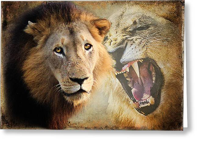 LION PROFILE Greeting Card by RONEL BRODERICK