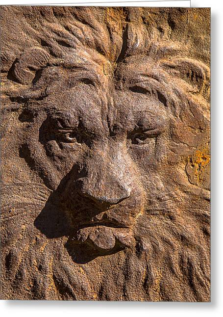 Lions Greeting Cards - Lion Wall Greeting Card by Garry Gay