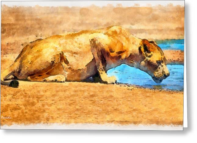 Lioness Drinking Greeting Card by George Rossidis