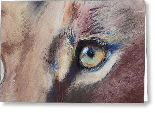 Lioness Greeting Cards - Lioness Eyes Greeting Card by Michelle Wolff