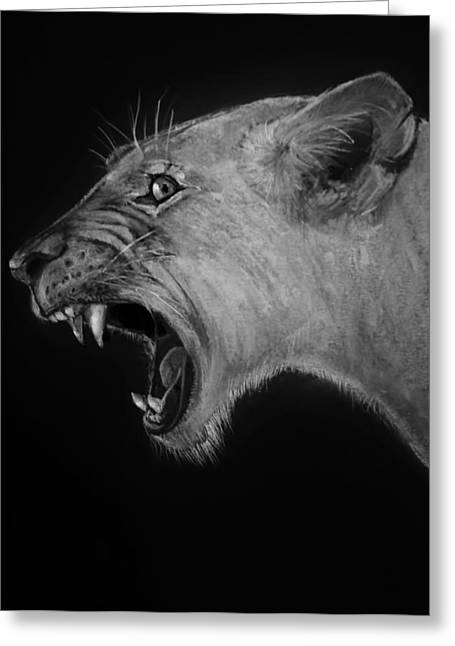 Lioness Drawings Greeting Cards - Lioness  Greeting Card by Jean Cormier