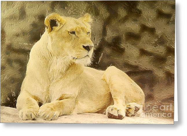 Growling Paintings Greeting Cards - Lioness lying Greeting Card by Odon Czintos