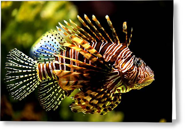 Aquarium Fish Greeting Cards - LionFish Greeting Card by Bill Tiepelman
