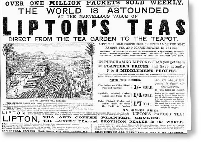 Lipton Tea Ad, 1892 Greeting Card by Granger