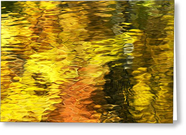 Liquid Gold Greeting Cards - Liquid Gold Abstract Reflection Greeting Card by Christina Rollo