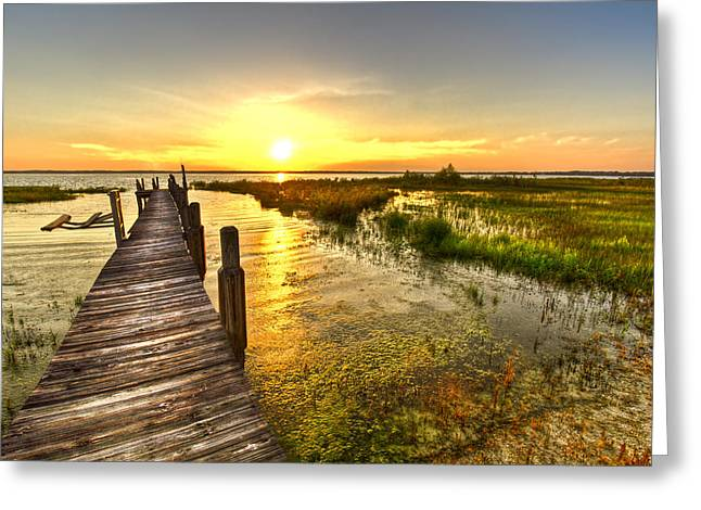 Moss Greeting Cards - Liquid Gold Greeting Card by Debra and Dave Vanderlaan