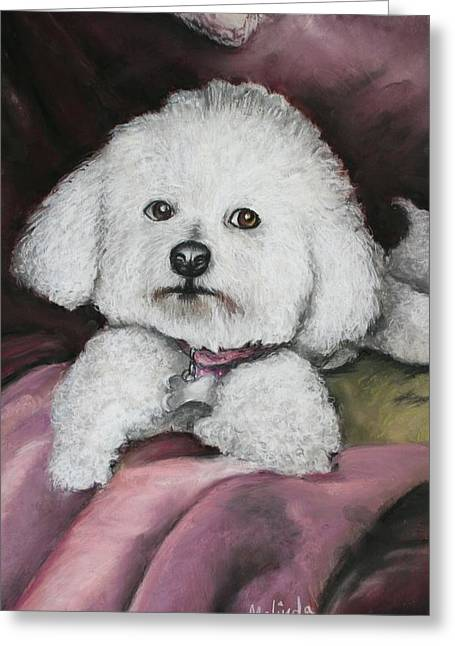 Lisa Bichon Pastel Greeting Card by Melinda Saminski