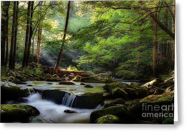 Flowing Stream Greeting Cards - Listen To The Season Greeting Card by Michael Eingle