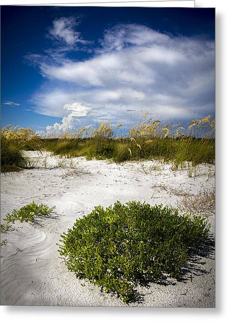 Sand Dunes Greeting Cards - Listen to the Silence Greeting Card by Marvin Spates