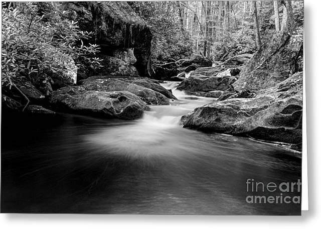 Flowing Stream Greeting Cards - Listen To The Sounds Of The Smokies Greeting Card by Michael Eingle