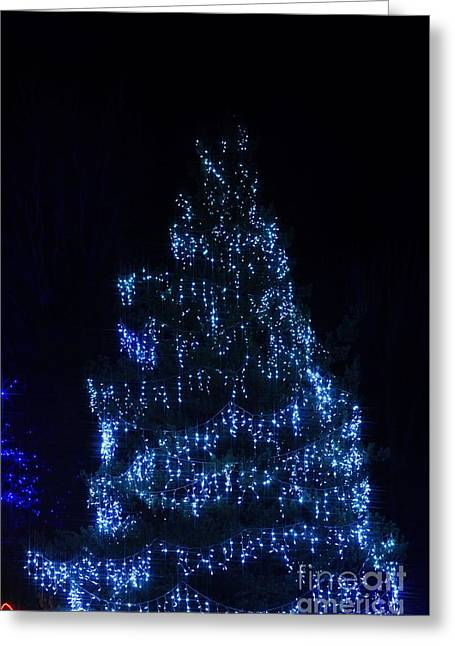 Lit Tree Greeting Card by Mandy Judson