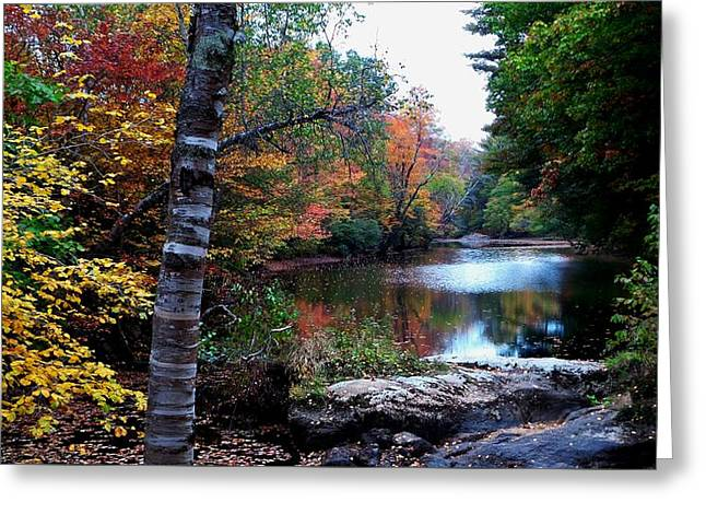 Androscoggin Greeting Cards - Little Androscoggin River Greeting Card by Mike Breau