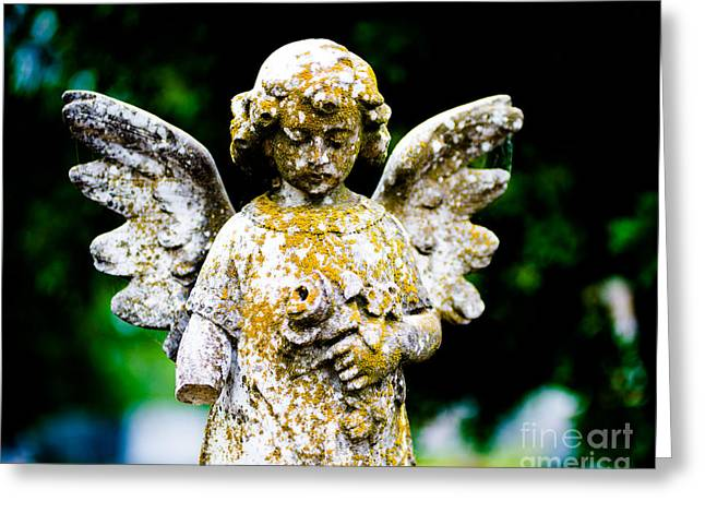 Little Angel Greeting Card by Sonja Quintero