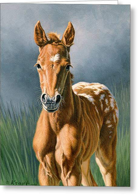 Foals Greeting Cards - Little Appy Greeting Card by Paul Krapf