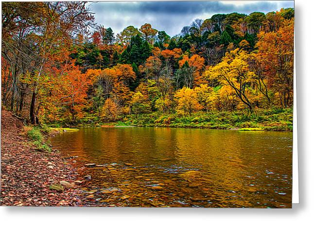 Fishing Creek Greeting Cards - Little Beaver Creek Bend Greeting Card by John Bailey