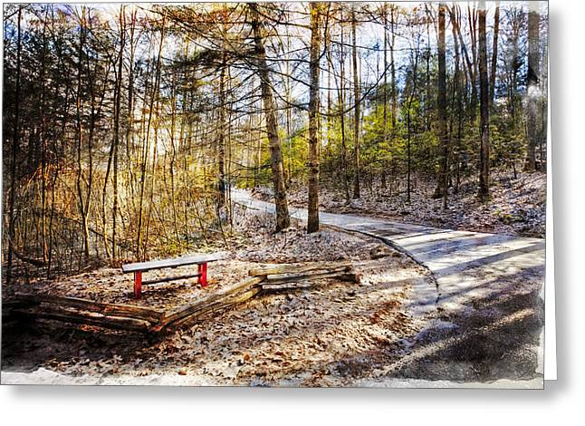 Winter Scenes Rural Scenes Greeting Cards - Little Bench by the Little Path Greeting Card by Debra and Dave Vanderlaan