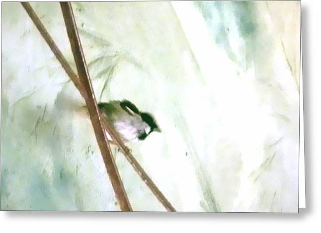 Sparrow Greeting Cards - Little bird Greeting Card by Sharon Lisa Clarke