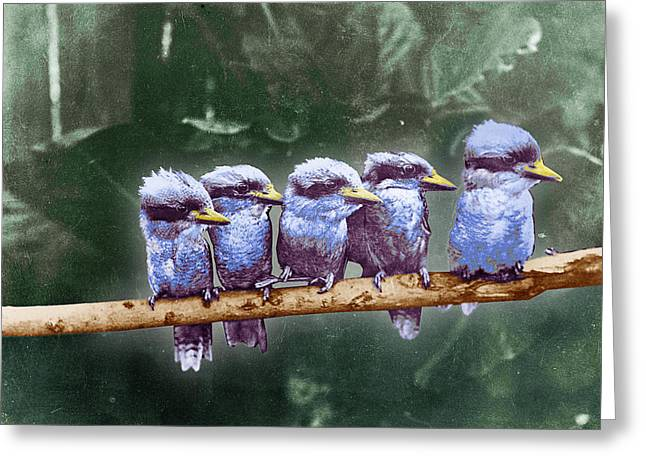 Sat Mixed Media Greeting Cards - Little Birds On A Branch Greeting Card by Tony Rubino