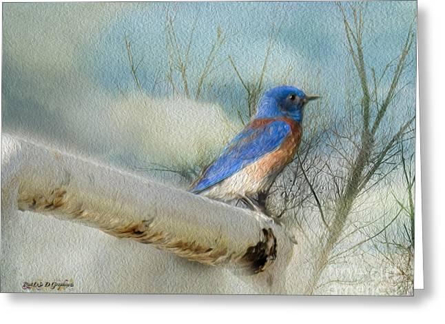Little Blue Bird Greeting Card by Rhonda Strickland