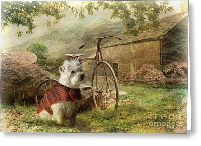 West Highland Terriers Greeting Cards - Little Bobby Greeting Card by Trudi Simmonds