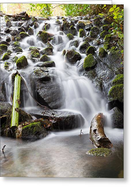 Pouring Greeting Cards - Little Cascade in Marlay Park Dublin Greeting Card by Semmick Photo