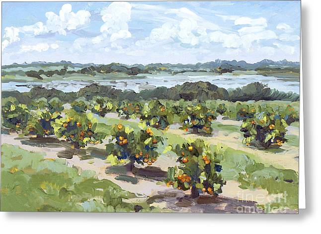 Little Citrus Grove Greeting Card by Blair Updike