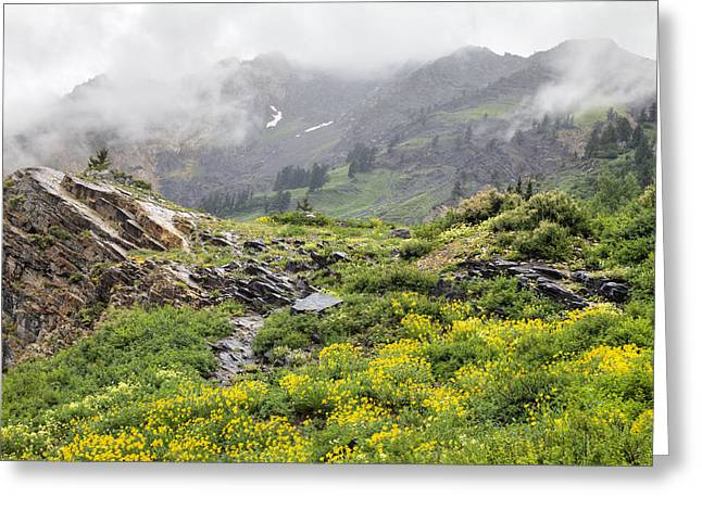 Little Cottonwood Canyon Greeting Cards - Little Cottonwood Canyon 0062 Greeting Card by Bob Hills