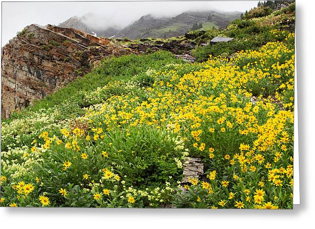 Little Cottonwood Canyon Greeting Cards - Little Cottonwood Canyon 0122 Greeting Card by Bob Hills