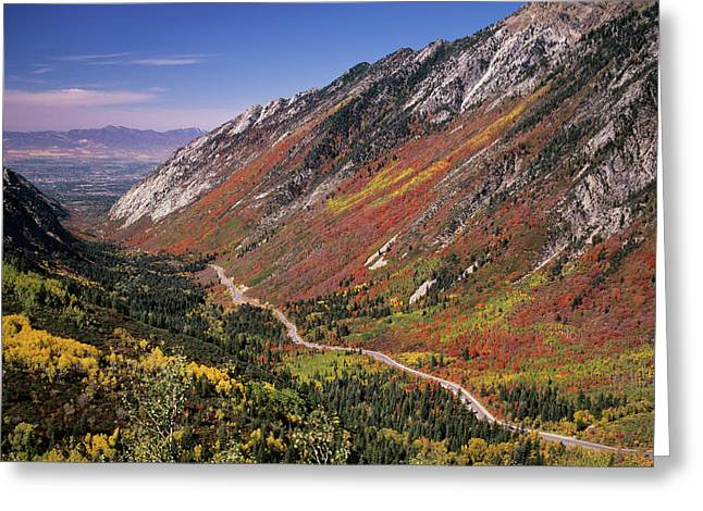 Little Cottonwood Highway (s Greeting Card by Howie Garber