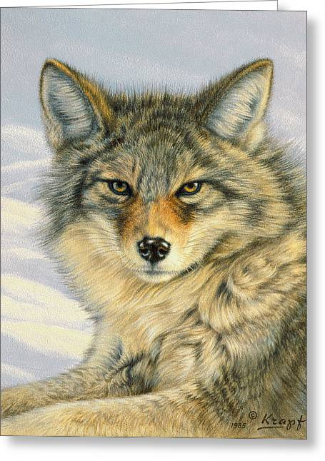 Little Coyote Greeting Card by Paul Krapf